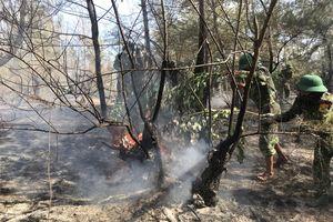 Kịp thời chữa cháy rừng khi đang tham gia chiến dịch tình nguyện