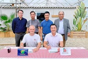 Tập đoàn Trường Tiền đầu tư công nghệ nuôi tôm sạch cho năng suất cao