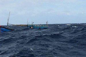 Thanh Hóa: Chìm tàu cá trong đêm, 4 ngư dân may mắn được cứu sống