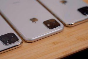 iPhone 11 sẽ có Taptic Engine mới, camera góc rộng, vẫn dùng Lightning
