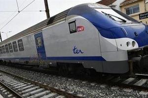 Đường sắt cao tốc Bắc-Nam: Công khai tối đa từng phương án