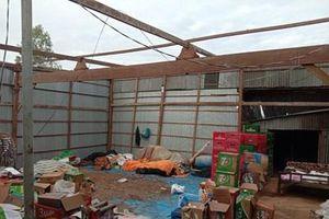 Hơn 600 căn nhà bị sập và tốc mái ở An Giang