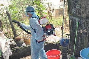 Hà Nội: Không chủ quan với dịch bệnh sốt xuất huyết