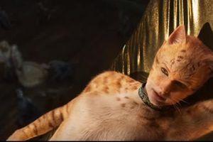 Taylor Swift và dàn sao sẽ hóa thân thành mèo trong siêu phẩm 'Cats'