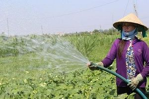 Sớm điều chỉnh quy chuẩn nước thải chăn nuôi cho trồng trọt