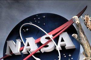 Hươu cao cổ là 'quân sư' của trung tâm hàng không vũ trụ NASA