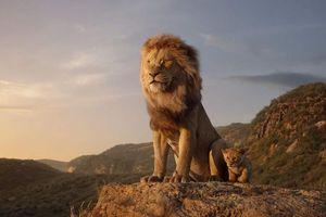 Được kỳ vọng là vậy nhưng 'The Lion King' vẫn gây thất vọng vì điều này