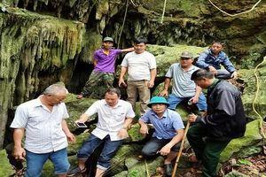 Chú dơi 'chỉ đường' cứu 4 thanh niên ra khỏi hang động nhũ thạch tuyệt đẹp