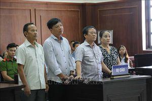 Làm giả hồ sơ để buôn lậu gỗ từ Lào về Việt Nam, hai vợ chồng ngồi tù
