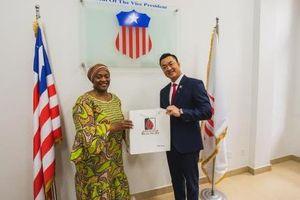 Tập đoàn Trường Tiền tiên phong chinh phục thị trường Liberia