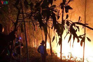 Hơn 300 người xuyên đêm dập lửa cứu rừng ở Quảng Trị