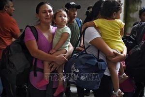 Mexico hỗ trợ Honduras 'giữ chân' người muốn di cư