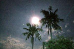 Vâng trăng Hoàng Hữu