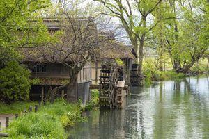 Sống đời thoát tục giữa vùng đất đẹp tựa tiên cảnh ở Nhật Bản