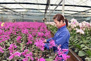 Ứng dụng khoa học và công nghệ nâng cao chuỗi giá trị sản phẩm nông nghiệp