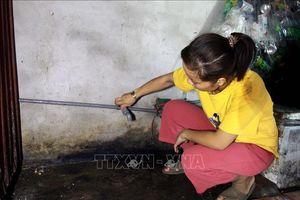 Nhiều hộ dân thiếu nước sinh hoạt thường xuyên tại huyện Vũ Thư