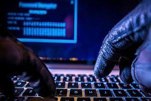 Hàng ngày vẫn có gần 100.000 địa chỉ mạng Việt Nam truy vấn, kết nối tới mạng máy tính ma