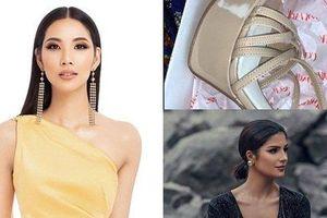 Bản tin Hoa hậu Hoàn vũ 31/7: Bóc tem giày cao gót huyền thoại Hoàng Thùy vừa tậu để so tài đối thủ quốc tế