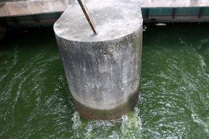 Nước Hồ Tây tiếp tục được xả vào sông Tô Lịch