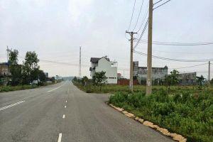 Vụ '2 VB giao - thu hồi 1 lô đất công' tại Bình Dương: Lãnh đạo Công ty Thuận Lợi nói gì?