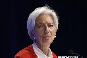 EU chưa thống nhất trong việc lựa chọn lãnh đạo mới của IMF