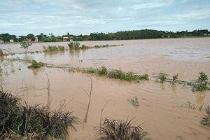 Bình Thuận: Mưa lớn, lốc xoáy làm thiệt hại trên 10 tỷ đồng
