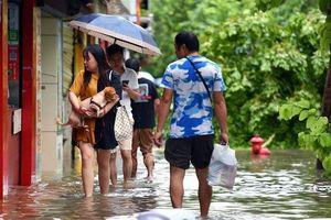 Bão Wipha biến đường phố Trung Quốc thành sông, cây bật gốc