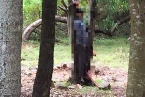 Nam thanh niên chết trong tư thế treo cổ tại khuôn viên khách sạn ở Hà Tĩnh
