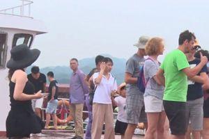 Hải Phòng: Đảm bảo an toàn cho hơn 1.500 khách du lịch khi bão đổ bộ