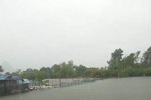 Hà Nội: Chủ động bảo vệ thủy sản do ảnh hưởng mưa bão gây ra