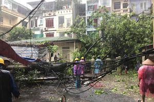 Hà Nội: Ảnh hưởng mưa bão số 3, nhiều cây cối bị quật đổ, cả phố Lý Nam Đế mất điện