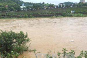 Phú Thọ: Có khả năng xuất hiện lũ lớn trên sông Thao