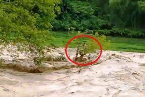 Lũ ống ập đến bất ngờ ở Thanh Hóa, 13 người mất tích, 1 người mắc kẹt giữa dòng suối dữ