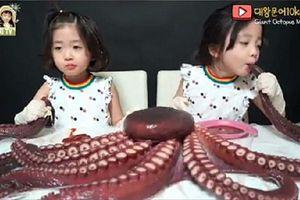 Kênh YouTube Hàn Quốc bị 'ném đá' vì bắt con mình ăn bạch tuộc theo cách phản cảm