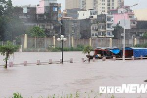 Lũ cuồn cuộn đổ về sông Ka Long: Hàng loạt tuyến đường ở TP Móng Cái ngập sâu