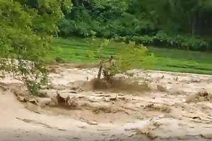 Tập trung tìm kiếm 13 người dân Thanh Hóa bị nước lũ cuốn trôi