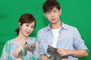Lý Hiện khiến fan cặp đôi bấn loạn khi bao cả rạp để ủng hộ phim điện ảnh mới của Dương Tử
