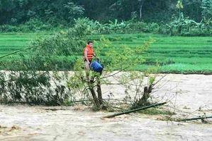 Thanh niên dũng cảm cứu người đàn ông ôm cây giữa dòng nước lũ suốt 10 giờ