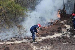 7 tháng, Quảng Ngãi xảy ra 51 vụ cháy rừng