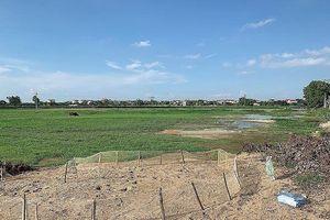 Bắc Ninh: Doanh nghiệp trúng thầu khẳng định không thông thầu, hợp đồng chưa ký vì nhiều vướng mắc