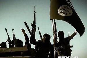Ai Cập và Jordan ủng hộ Iraq xóa sổ hoàn toàn tổ chức khủng bố IS