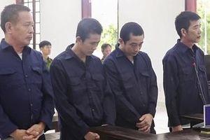 Lừa bán thiên thạch giá triệu đô, 4 bị cáo lãnh án 55 năm tù