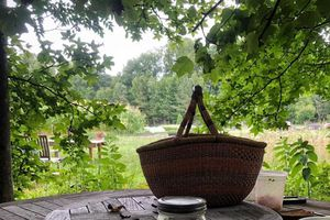 Cuộc sống hạnh phúc của vợ chồng trẻ cùng làm vườn, trồng rau trên mảnh đất xa phố thị