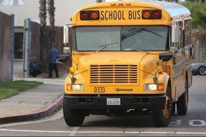 38 trẻ em thiệt mạng vì bị bỏ quên trên ô tô ở Mỹ mỗi năm