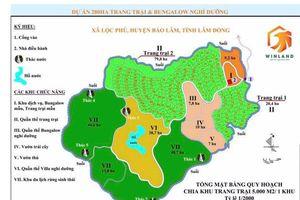 Vụ ngang nhiên rao bán đất rừng: Lập đoàn kiểm tra toàn diện dự án