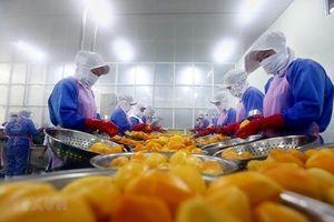Thương chiến Mỹ-Trung tác động mạnh tới xuất khẩu của Việt Nam