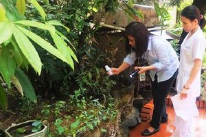 Hà Nội khẩn trương chống dịch sốt xuất huyết