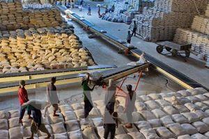Nhiều cơ hội xuất khẩu gạo vào thị trường Mexico
