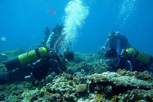 Nghiên cứu khoa học trên vùng biển Việt Nam phải được cho phép
