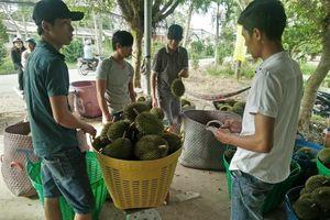 Ngã Bảy quyết tâm xây dựng nông thôn mới nâng cao